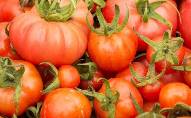 自然栽培農法とは