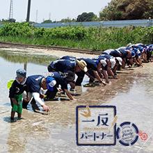 カシオ計算機株式会社さんご支援の「一反パートナー」が6月17日の田植えからスタート。