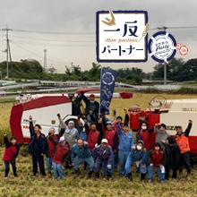カシオ計算機さんご支援の群馬・前橋の田んぼで10/19に稲刈りを行いました。