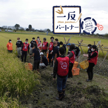 10月16日(金)、埼玉県熊谷市の埼玉福興(株)様の田んぼで一反パートナー企画  シナネンHD様支援による稲刈りが行われました。