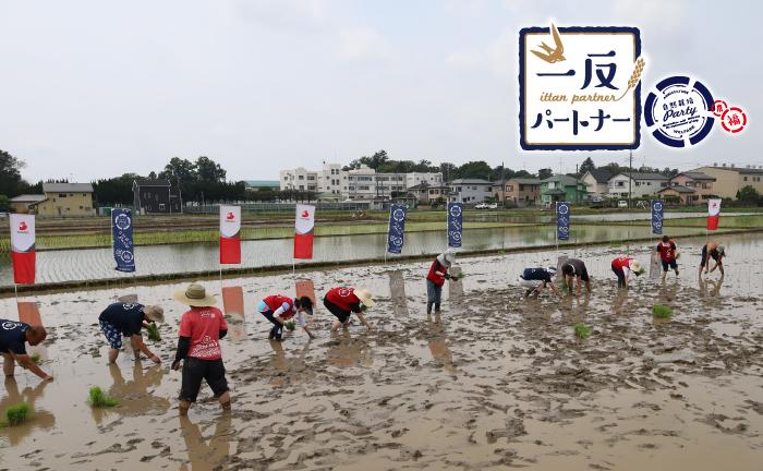 6月25日(金)、埼玉県熊谷市の埼玉福興株式会社様の田んぼでシナネンホールディングス株式会社様ご支援による田植えが行われました。
